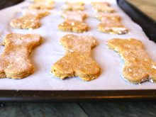 Homemade Pumpkin and Peanut Butter Dog Biscuits