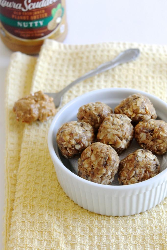 Nut Butter Protein Bites Recipe