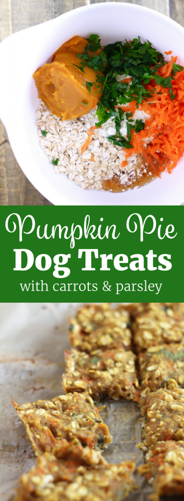 Pumpkin Pie Dog Treats -- your pup will LOVE these! ll Gluten-Free, Dairy-Free, Fiber-Packed ll www.littlechefbigappetite.com