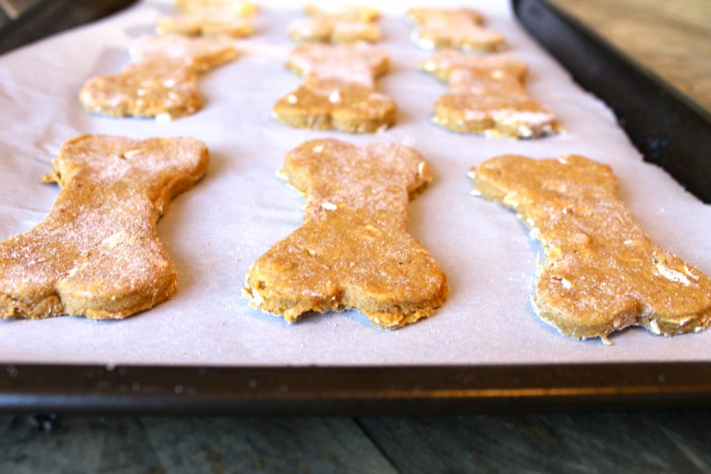 Homemade Pumpkin and Peanut Butter Dog Biscuits | littlechefbigappetite.com 2
