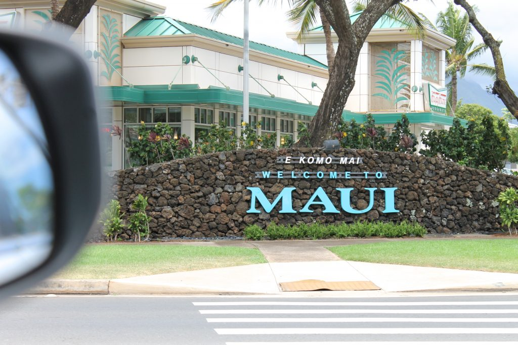 Welcome to Maui Sign | www.littlechefbigappetite.com