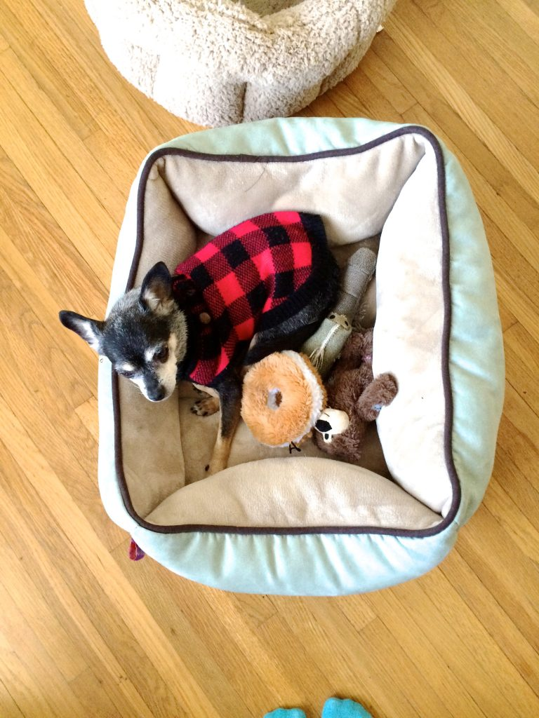 Bessie and Her Many Beds l www.littlechefbigappetite.com