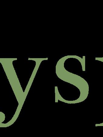 tidyspot logo green
