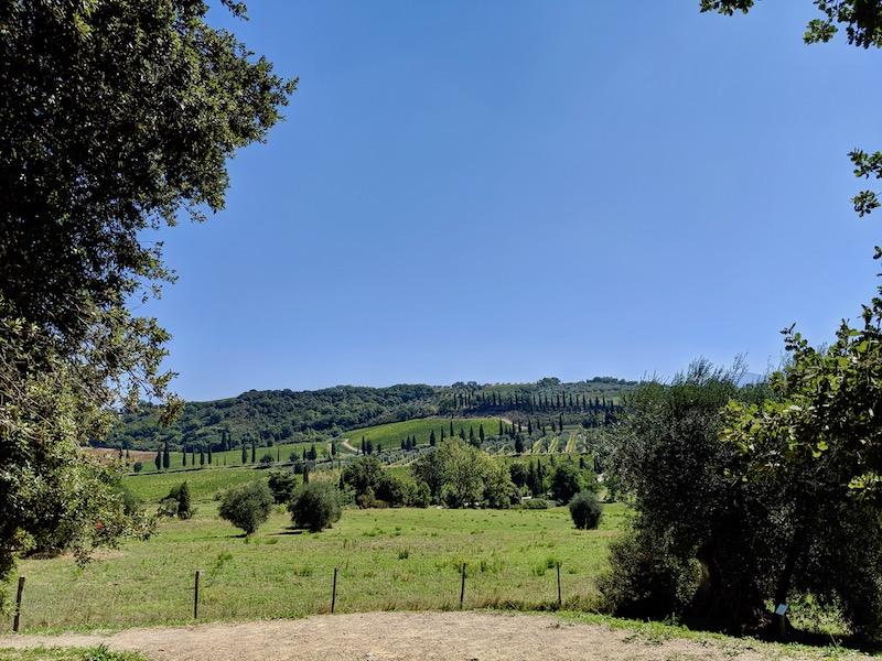 Tuscany Landscape | littlechefbigappetite.com